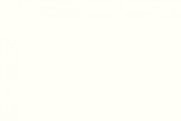 021291000014-116801-weiss-white1A587EA0-E68D-0B9D-7B67-A561770880B8.jpg