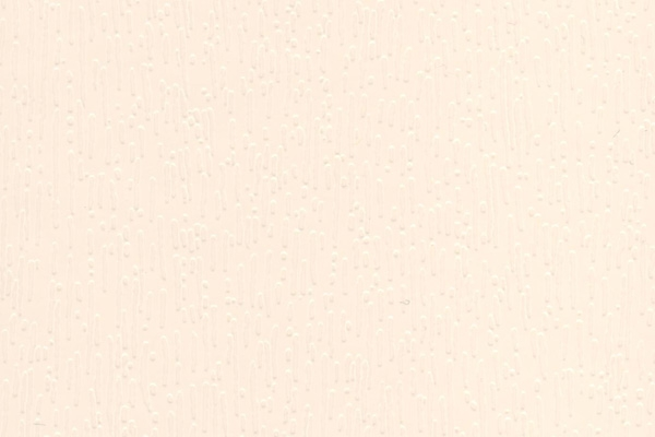 yel88-u4-cream-whiteED46719F-A9AD-C7A9-DF36-06B3E734DB79.jpg